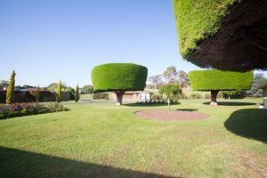 Warrnambool Racing Club Gardens